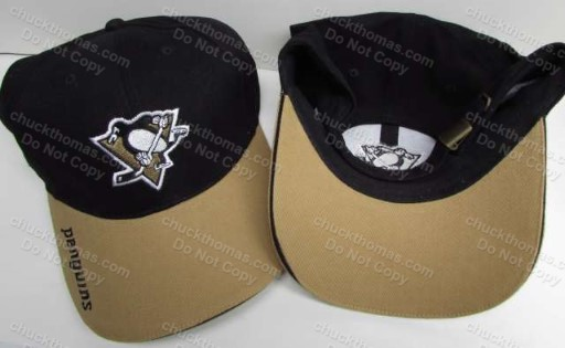 Penguin Hockey Blank and Brown Ball Cap a 2003 Home Game Giveaway
