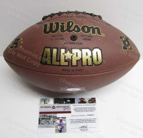Troy Signed Steeler Football Wilson